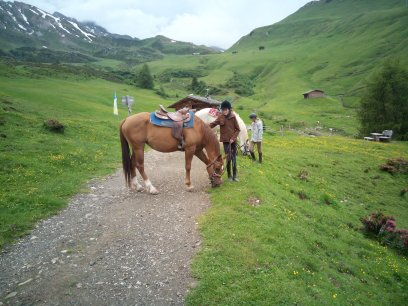 Horse riding in the Dolomites/ South Tyrol